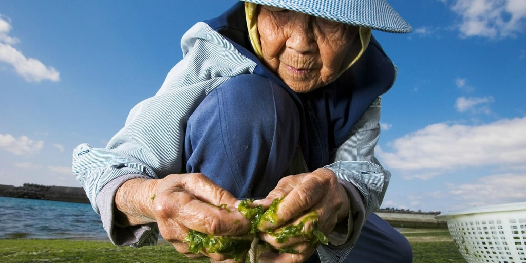 What We Can Learn About Longevity from the World's Oldest Person