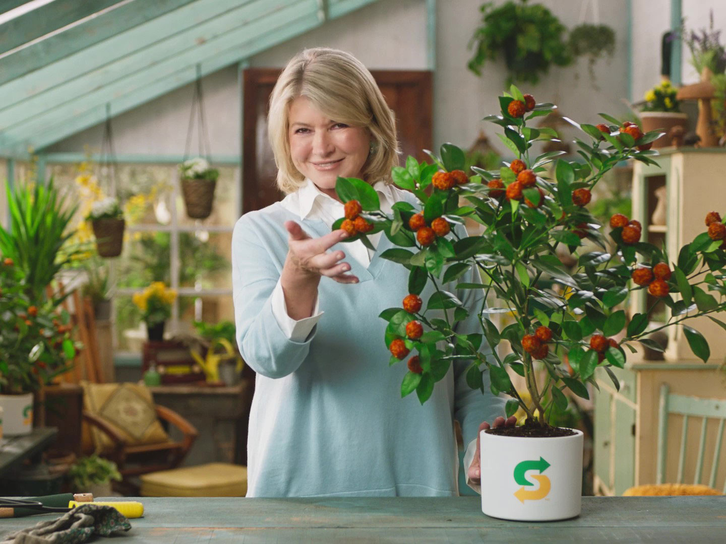 Martha Stewart on Plant-based Diets