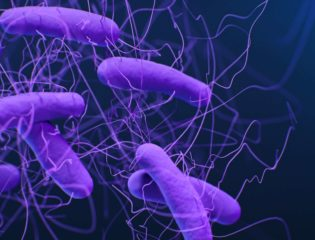 One Proactive Woman's Game-Changing Fight Against Superbugs
