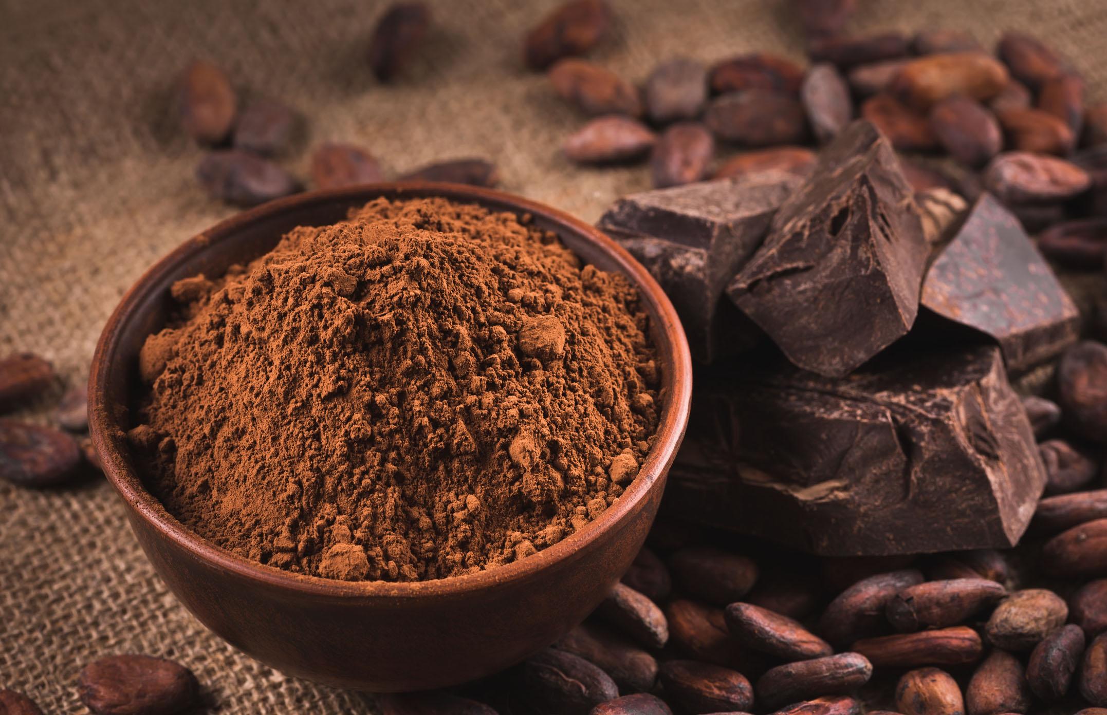 Cocoa powder, cocoa beans, and dark chocolate bars