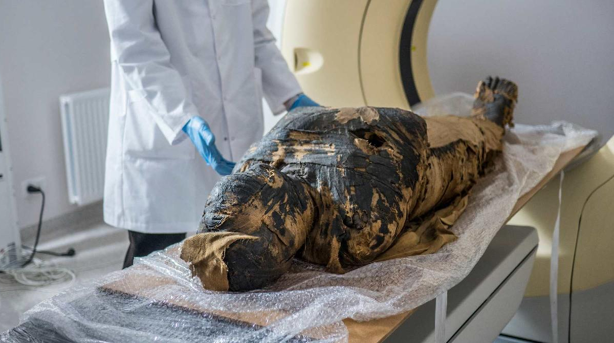 The pregnant mummy during a CT scan
