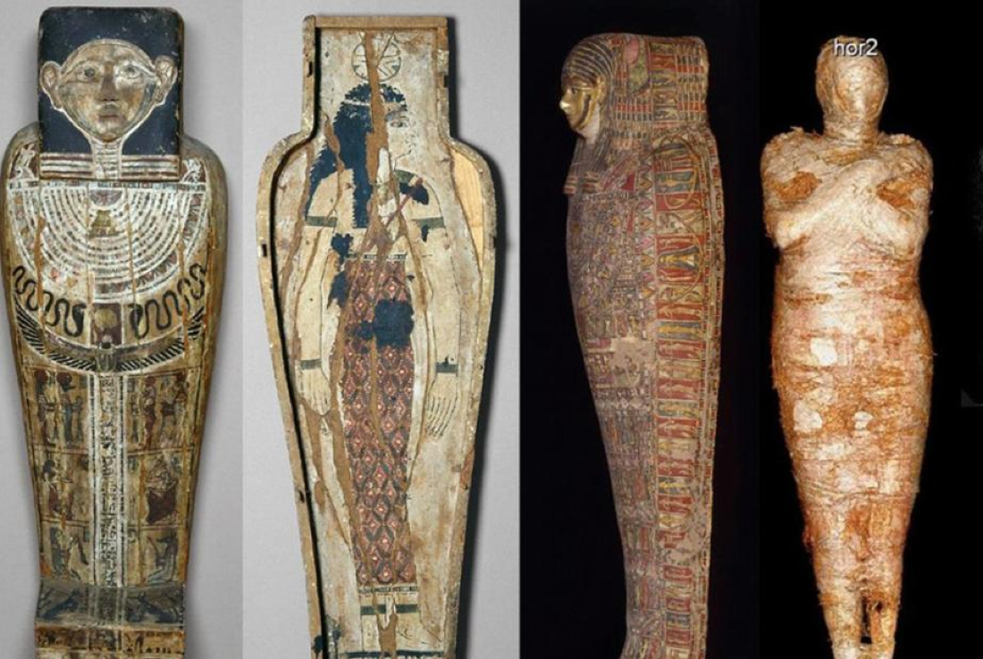 The coffin, cartonnage case and pregnant mummy